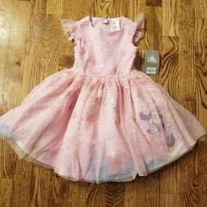 NWT Disney Store❤ Princess Dress ❤ Size 2
